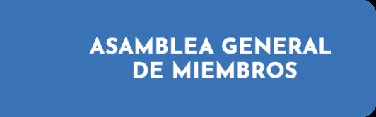 asamblea general de miembros